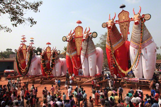 Bull effigies used at a temple festival in Kerala