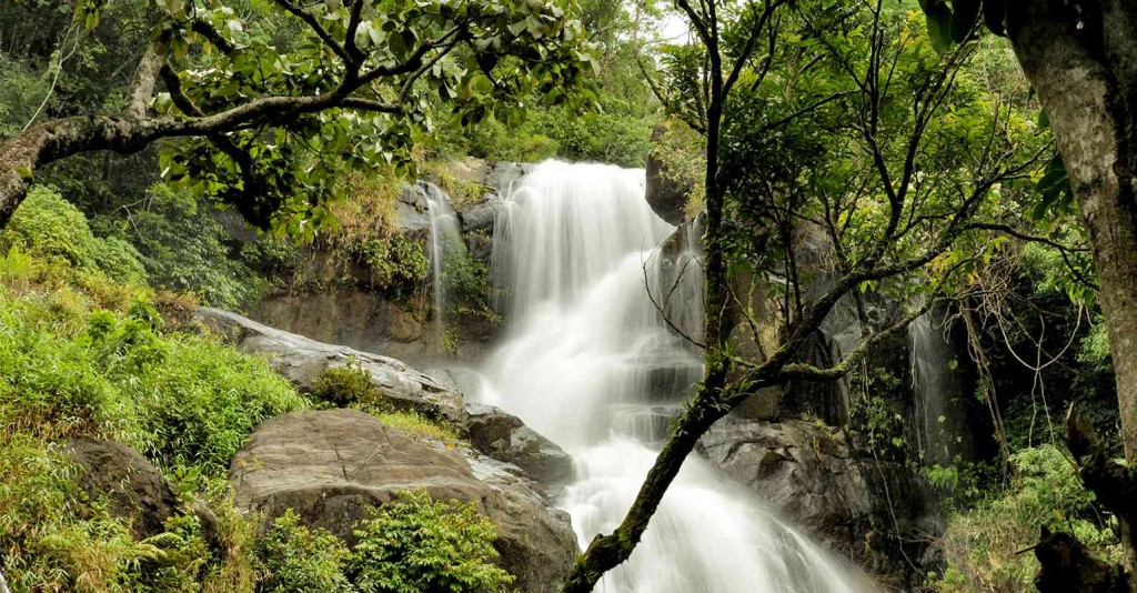Wayanad waterfalls
