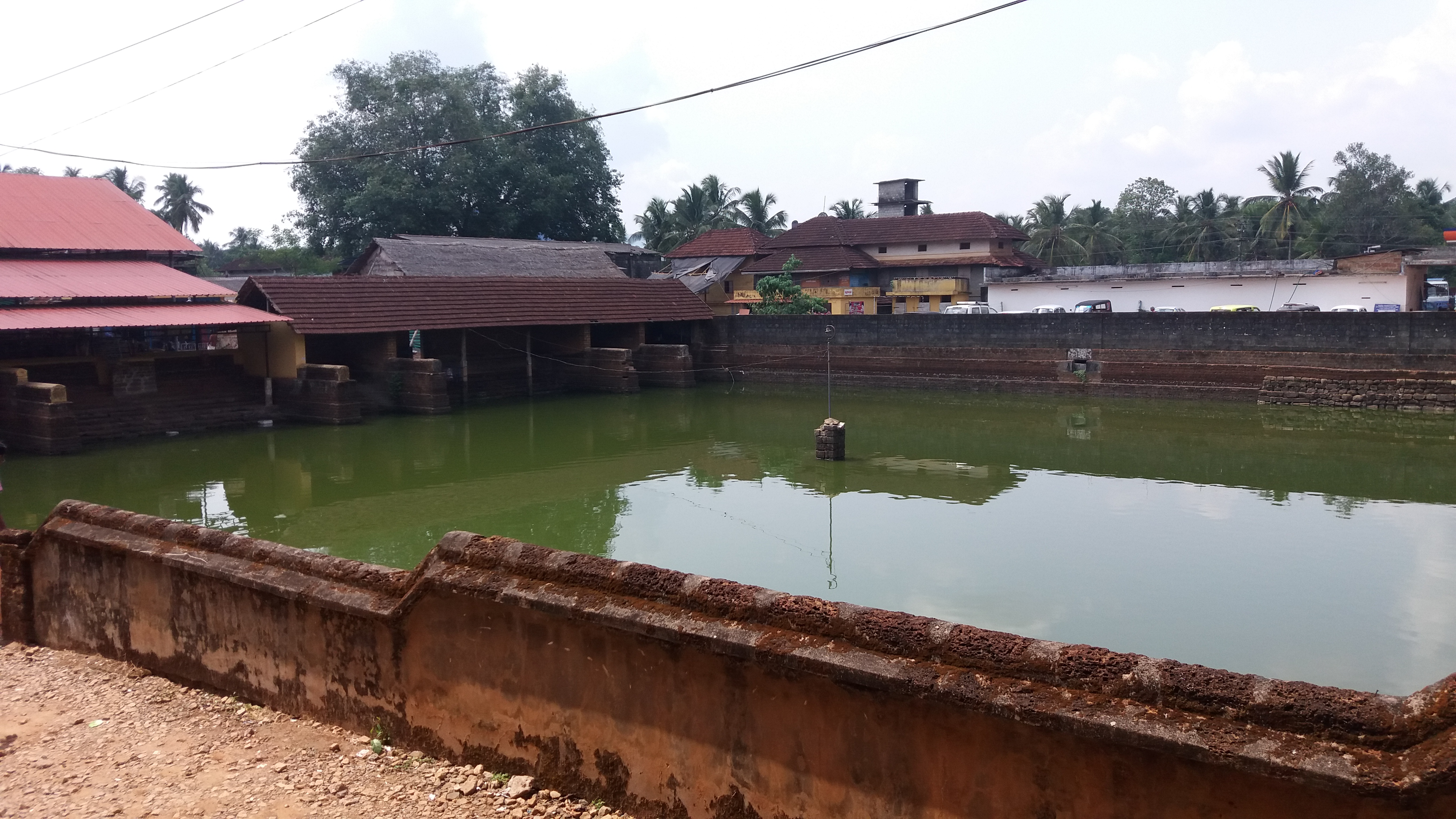 Cherpulassery Ayyappan Kavu Temple Pond