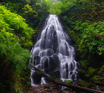 chadwik-fall-shimla