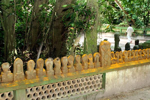 mannarasala-serpent-temple
