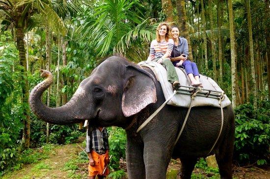 Elephant rides in Thekkady, Kerala